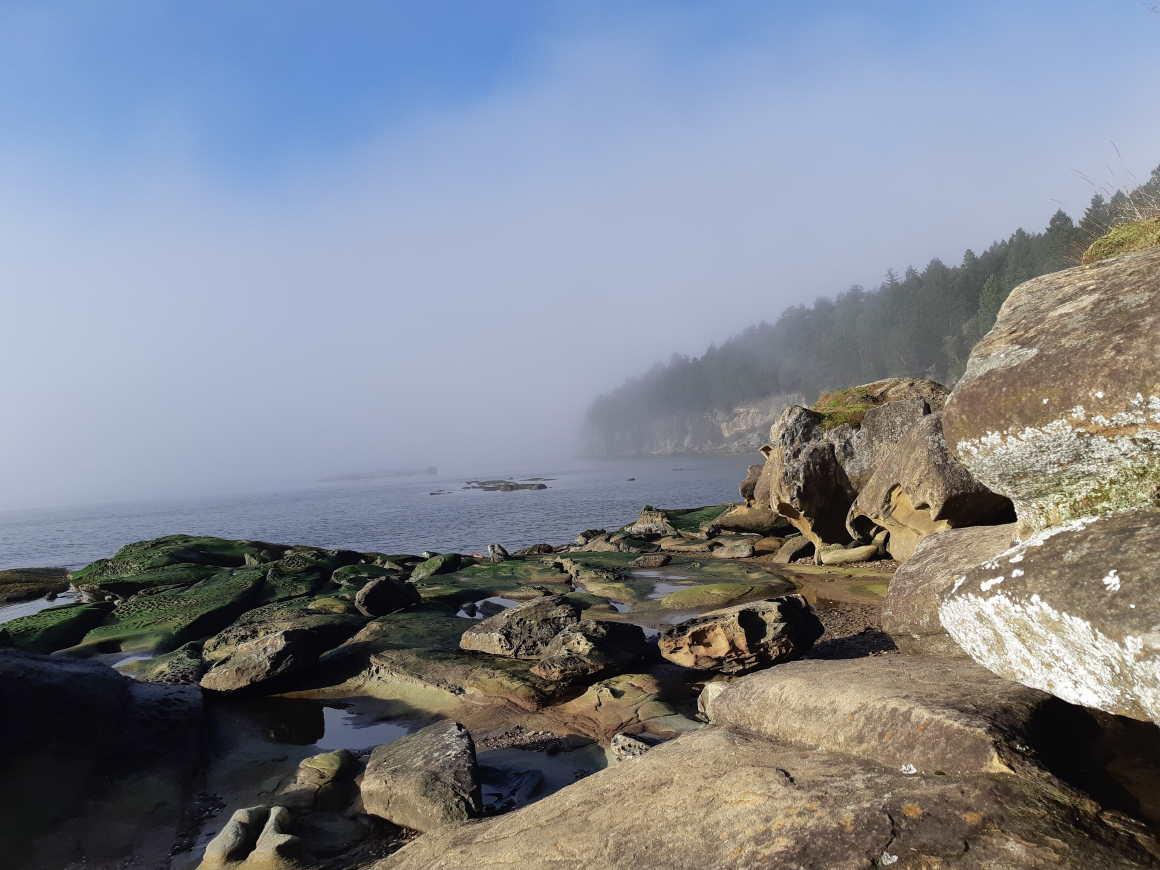 Coast off Gabriola Island
